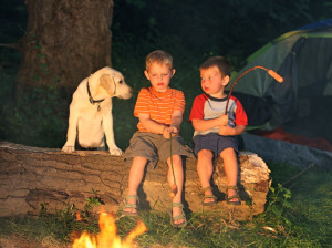 camping with richmond dog