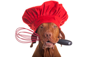 dog chef with egg beater
