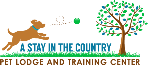 A Stay in the Country logo
